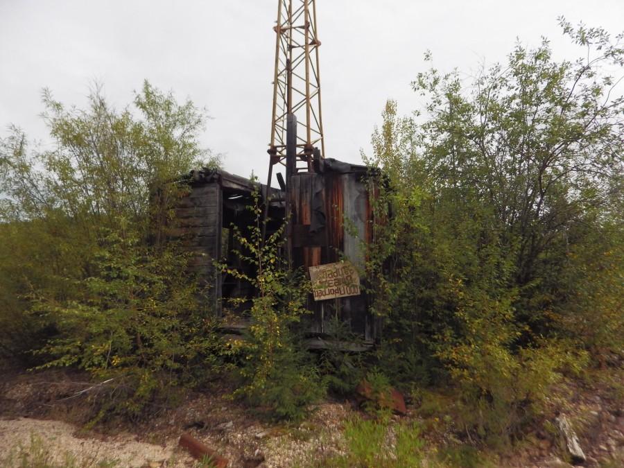 катангли сахалинская область фото стрижка подходит